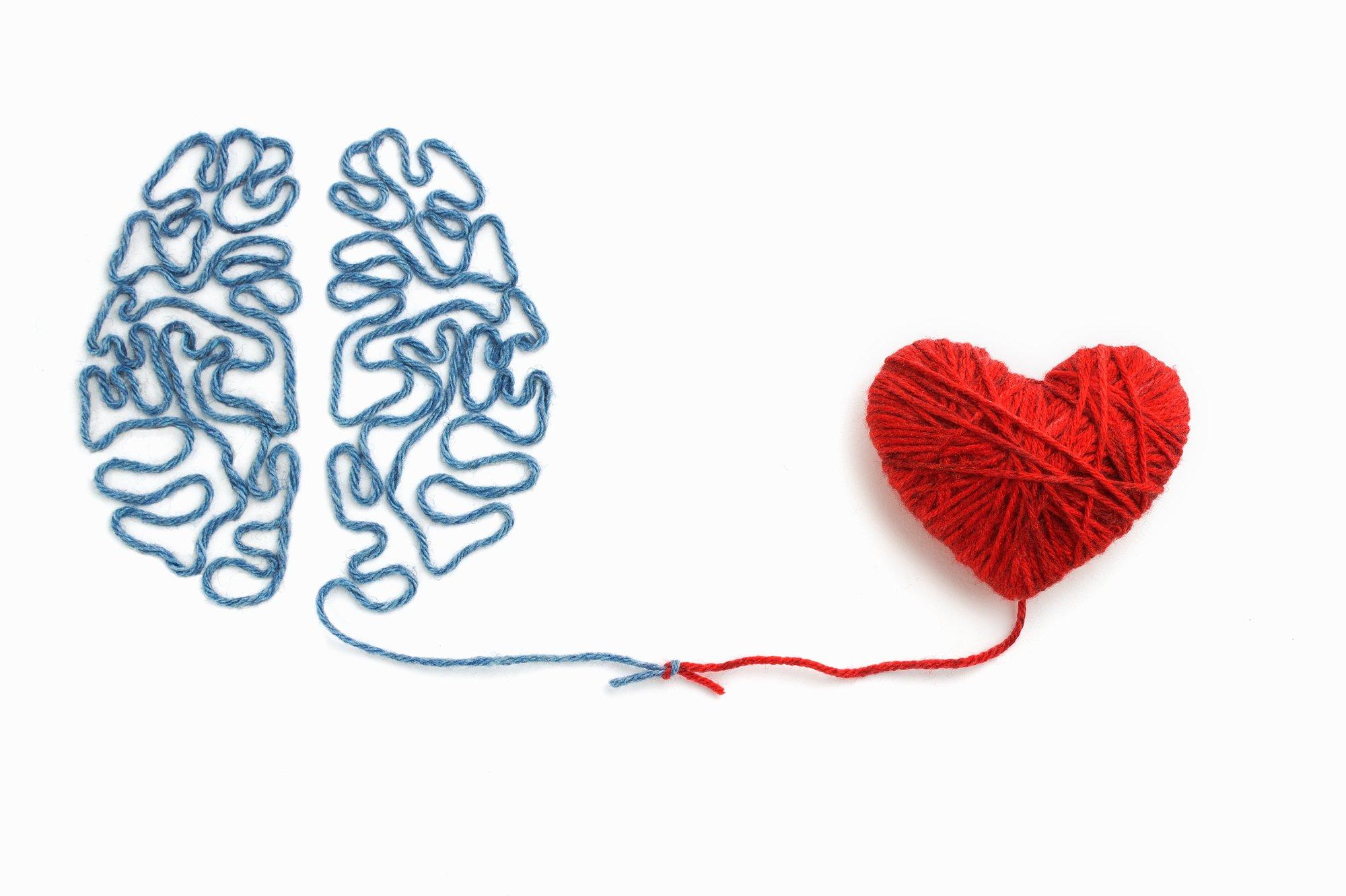 hoofd en hart verbinding