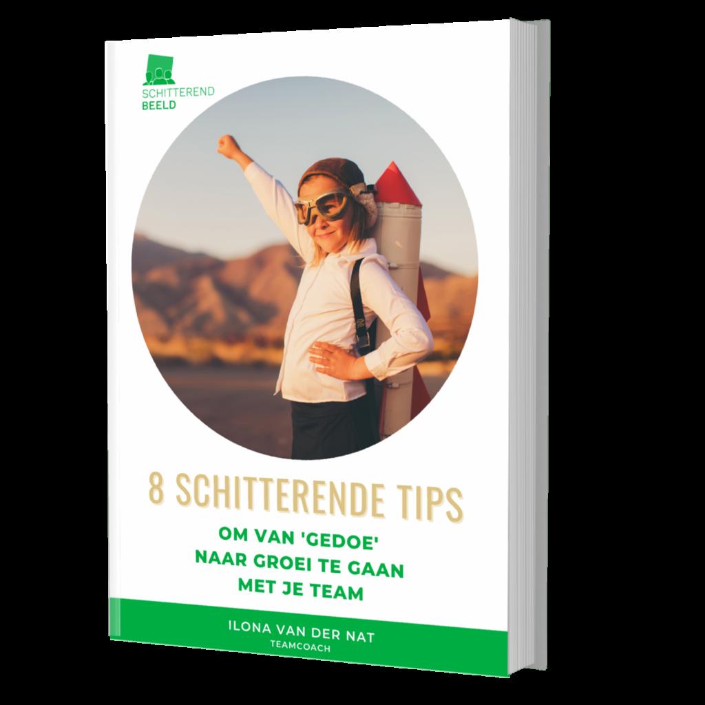 e-book, 8 gratis tips om van gedoe naar groei te gaan met je team